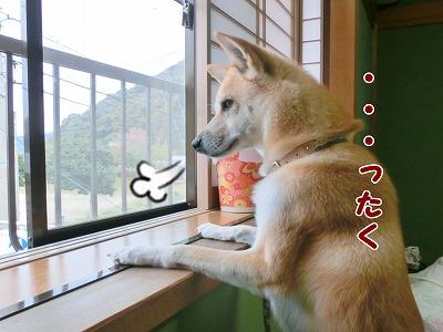 s-nagisa150126-CIMG4284