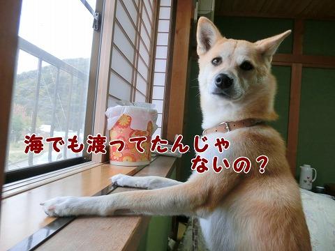 s-nagisa150126-CIMG4285