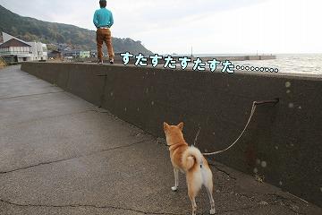 s-nagisa150201-IMG_4901