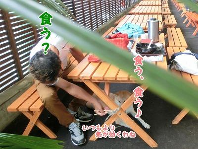 s-nagisa150201-CIMG4297