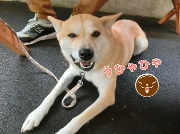 s-nagisa150201-CIMG4294