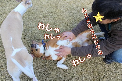 s-nakayoku150301-IMG_5824