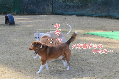 s-nakayoku2150228-IMG_5785