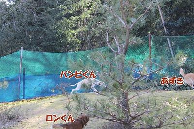 s-nakayoku2150228-IMG_5802