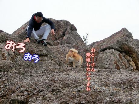 s-dogrun150407-CIMG7167
