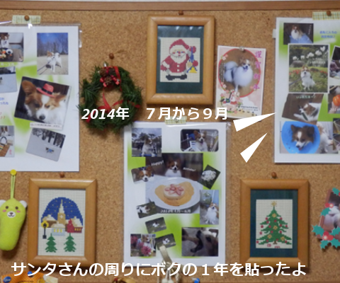 20141231a.png