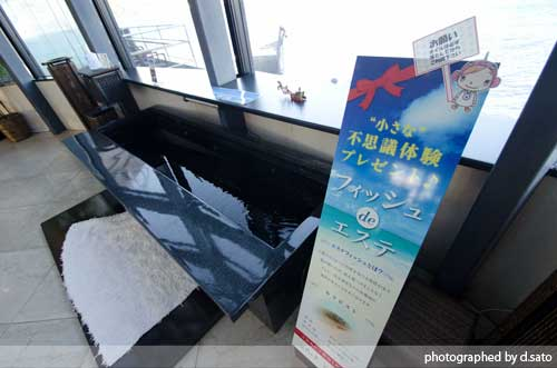 静岡県 伊東市 ラグジュアリー和ホテル 風の薫 桟橋 散歩 ブログ 口コミ 写真08