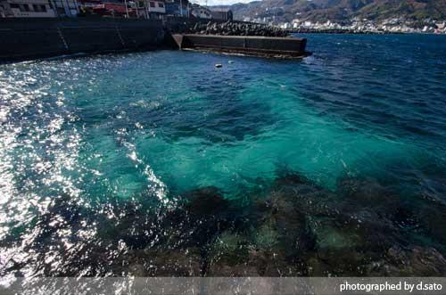 静岡県 伊東市 ラグジュアリー和ホテル 風の薫 桟橋 散歩 ブログ 口コミ 写真14