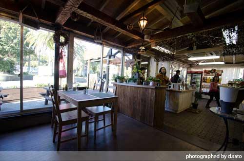 静岡県 伊東市 伊豆 四季の花公園 カフェレストラン フルール おしゃれなランチとインテリア14