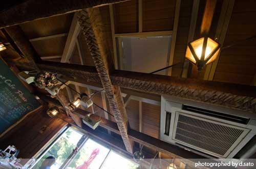 静岡県 伊東市 伊豆 四季の花公園 カフェレストラン フルール おしゃれなランチとインテリア29