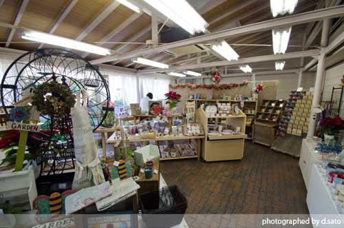 静岡県 伊東市 伊豆 四季の花公園 カフェレストラン フルール おしゃれなランチとインテリア35