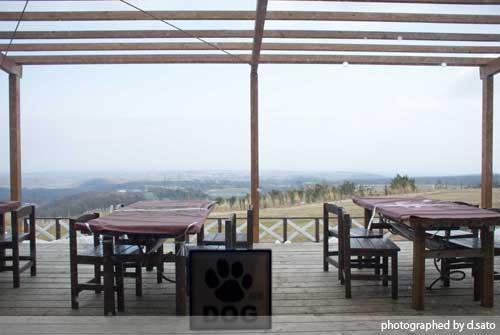 栃木県 那須郡 那須どうぶつ王国 食べ放題 BBQ バイキング バーベキューガーデン 口コミ 店内 インテリア写真 09