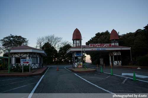 静岡県 伊東市 伊豆シャボテン公園 カピバラ サボテン 11