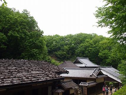2015年4月日本民家園 (39)