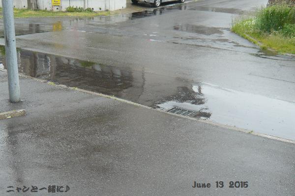 雨061315