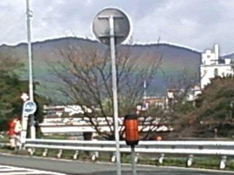 超低空の虹