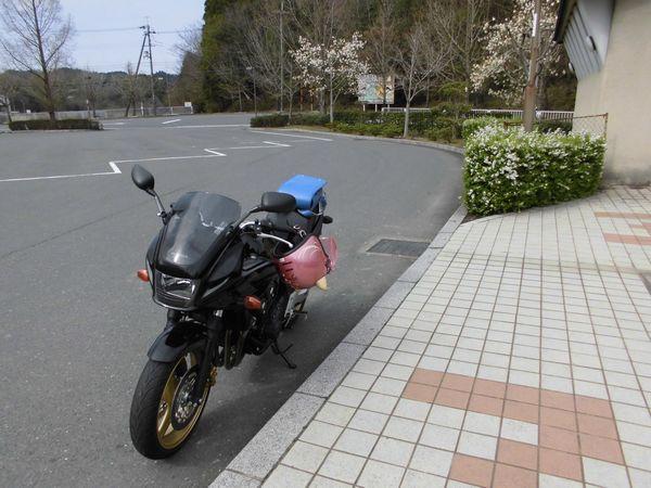 CIMG35411.jpg