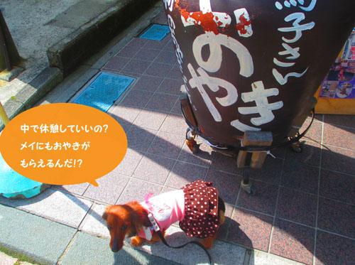 2015-03-hakone12.jpg