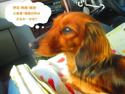 2015-03-hakone4.jpg