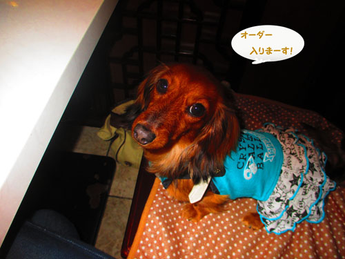 2015-05-yokohama10.jpg