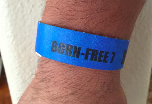 bornfree2.png