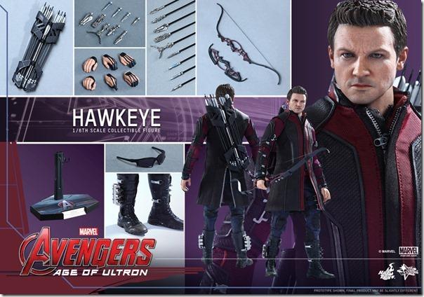 hawkeye-17