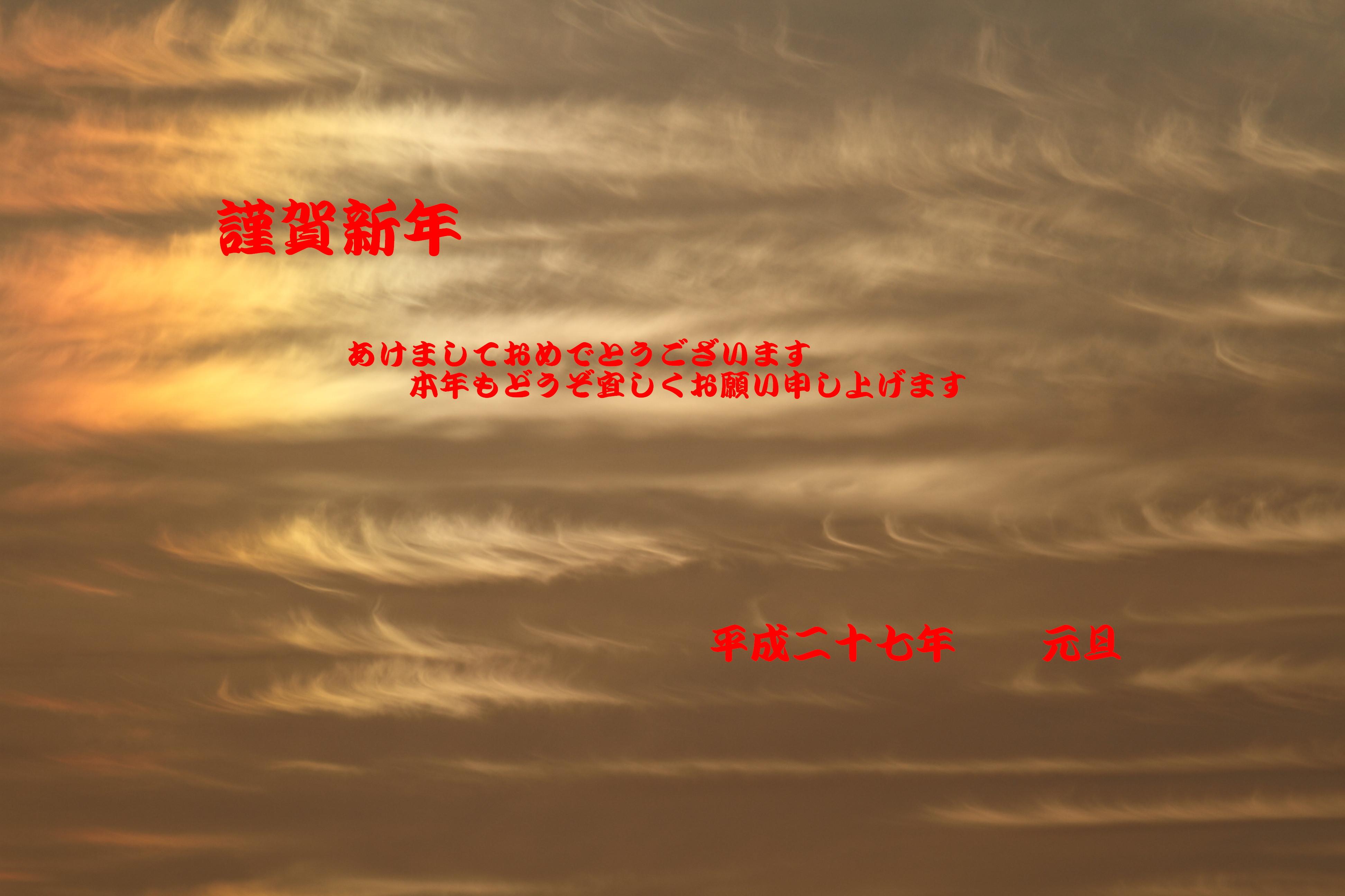 IMG_0737.jpg