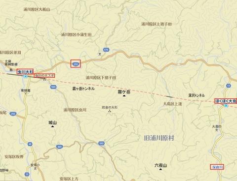 mushikawa.jpg