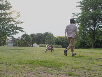 公園20150531-5