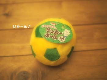 サッカーボール20150606-1