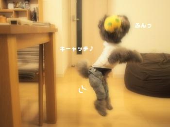 サッカーボール20150606-4