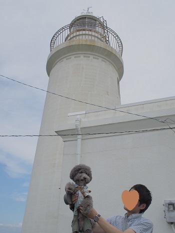 灯台20150628-9
