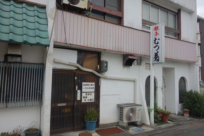 むつ菊2-1