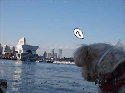 初めての横浜5