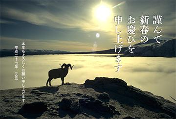 jp15t_et_0094_b.jpg