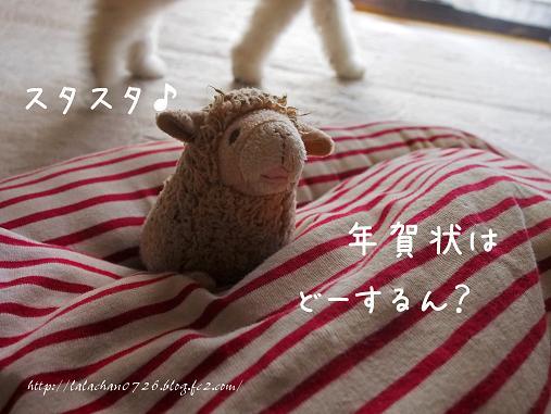 ららちゃんたらー(^_^;)