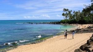 亀ビーチと呼ばれていたラニアケアビーチ