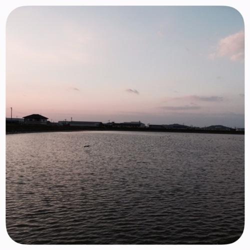 溜池の夕暮れ