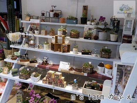 ms farm かふぇ1