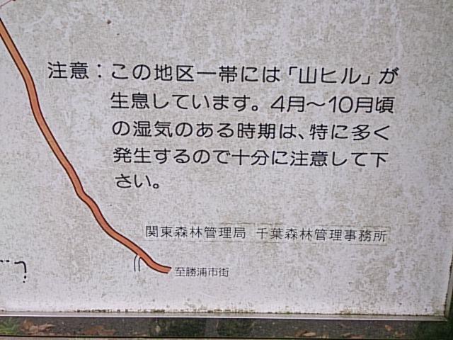 YBK-21.jpg