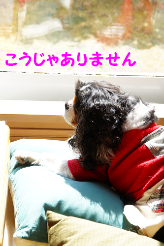 201503121503067a8.png