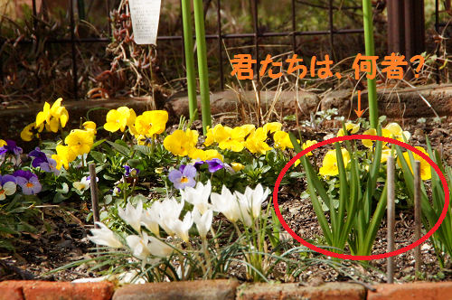 201503311722122ce.png
