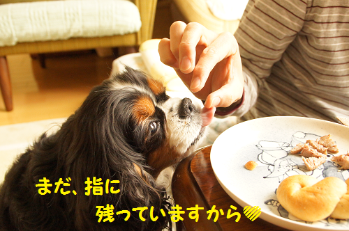 201505011417099a3.png