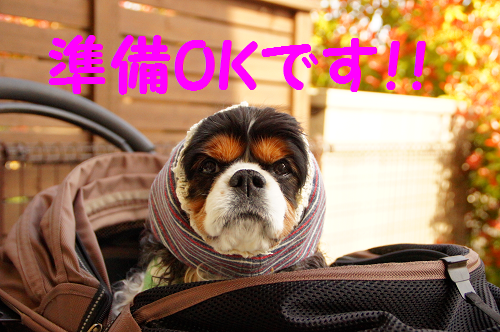 20150522155930a1b.png