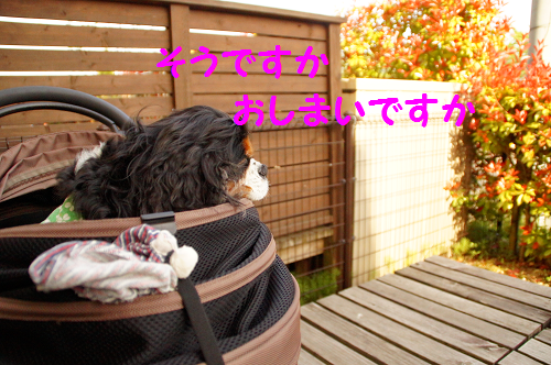 20150522160336f09.png