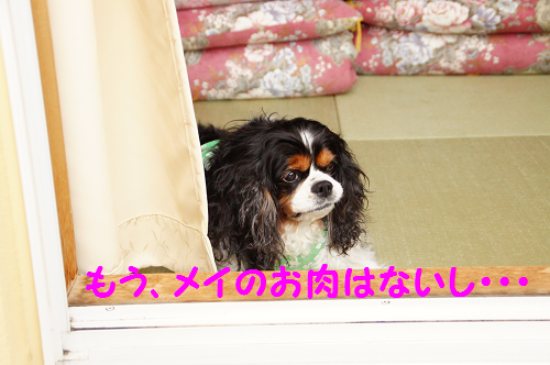 20150526140204862.png
