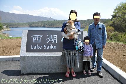 fujigoko201504031.jpg