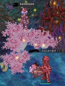 screenIdavoll357.jpg