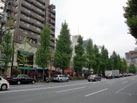 PREMIUM33@神保町・20150428・白山通り