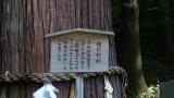 20141011諏訪大社155